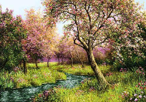 منظره شکوفه درختان بهار