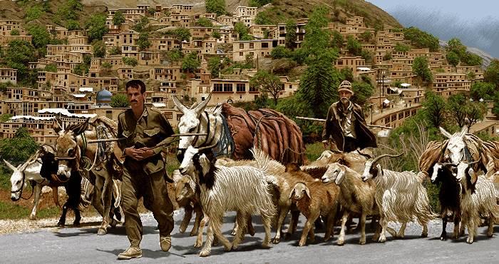 چوپان روستا