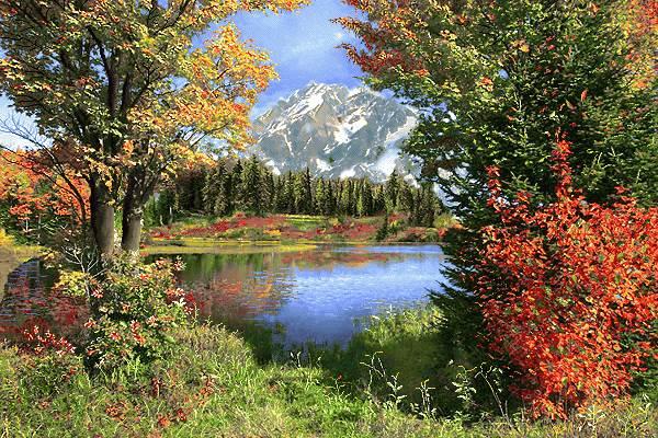 منظره پاییزی طبیعت