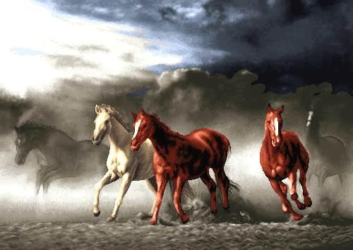 طوفان و اسبها