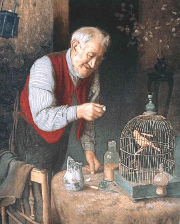 پیرمرد و قفس پرنده