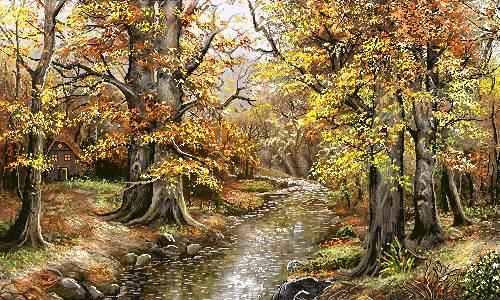 پاییز جنگل 4