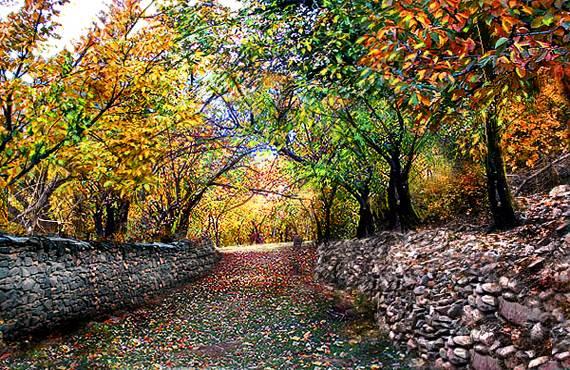 کوچه باغ پاییزی 7