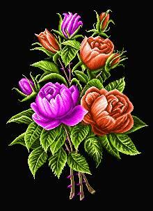 شاخه گلهای رز