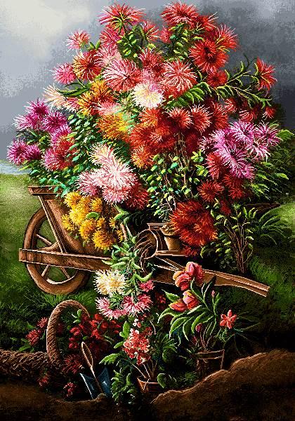 گاری پر از گل