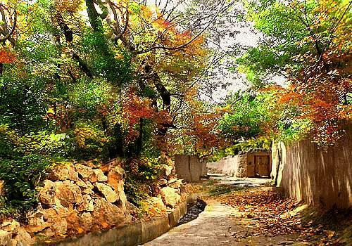 طبیعت روستا
