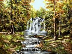 آبشار زیبای جنگلی